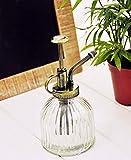Bouteille rétro en verre vaporisateur pour arrosage plantes 16 x 7.5cm transparent