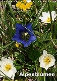 Alpenblumen (Wandkalender 2019 DIN A4 hoch): Dieser Kalender zeigt die bunte Vielfalt der Alpenflora. (Monatskalender, 14 Seiten ) (CALVENDO Natur)