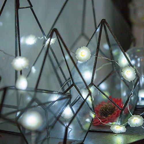 ziste-schimmer-lichterkette-dekorative-leuchtung-fr-saisonale-urlaub-weihnachten-40-leds-leuchter-10