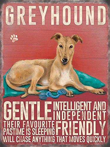 creme-pour-chien-greyhound-petite-plaque-en-metal-a-suspendre-doux-intelligent-et-independant