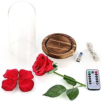 """Vollständiges """"Die Schöne Und Das Biest""""-set, Rote Seidenrose Und Led-licht Mit Herabgefallenen Blütenblättern In Glaskuppel Auf Einem Holzsockel Von Ysber Color Lamp Rose Shade 2"""