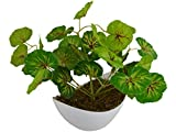 #5: Thefancymart Artificial Leaves plant (size 10 inchs/ 25 cms) with Boat shape Pot Code- 1145