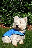 Prestige Pet Products - Manteau rafraîchissant pour chien - Bleu -Taille S...