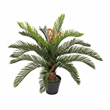 Homescapes Kunstpflanze immergrün Palmfarne Cycadales Pflanze im Topf 75 cm hoch