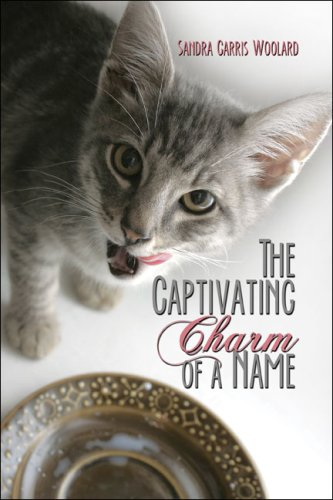 The Captivating Charm of a Name Cover Image