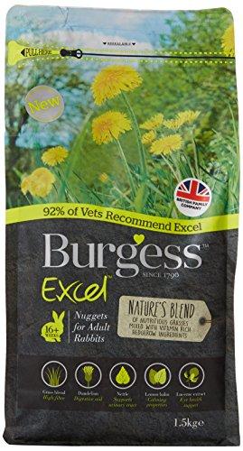Burgess Excel Nuggets mit Mint Erwachsene Kaninchen Futter 10 kg - 1.5 kg (Mint-aroma, Extrakte)