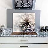 FTB Gsmarkt Herdabdeckplatte Schneidebrett 60x52 Glasbild Pusteblume