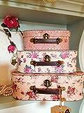Set of 3 Vintage Rose Suitcases Storage Boxes