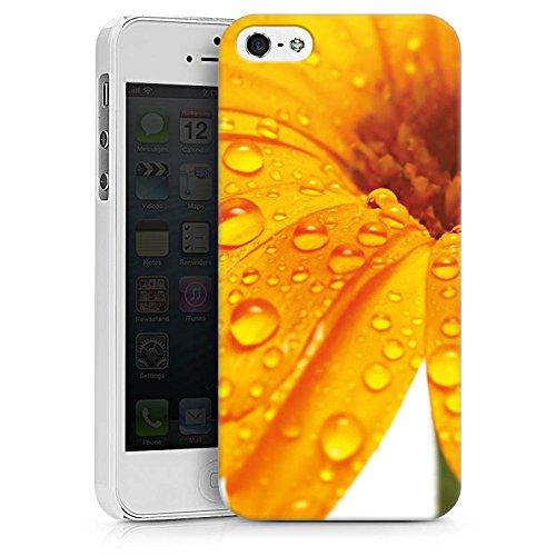Apple iPhone X Silikon Hülle Case Schutzhülle Blume Tropfen Orange Hard Case weiß