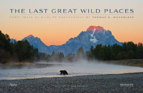 The Last Great Wild Places: Forty Years of Wildlife Photography by Thomas D. Mangelsen by Todd Wilkinson (2014-10-21)