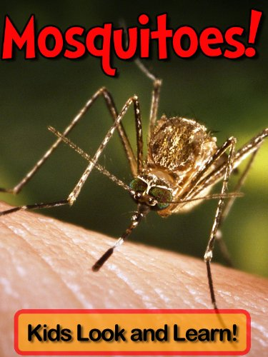 mosquitoes-learn-about-mosquitoes-and-enjoy-colorful-pictures-look-and-learn-50-photos-of-mosquitoes