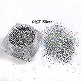 Girls Gallery 1 Bottle Mini Hexagon Shape Laser Shining Nail Art Glitter … (Silver)