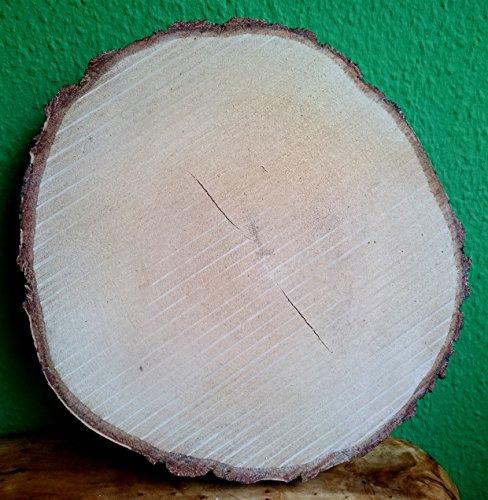 Birke (Birkenscheibe rund ca. 30 - 35 cm (Dicke: 3 cm) Holzscheiben Birkenstamm Birken Holz Dekoration Hochzeit Baumscheiben)