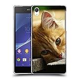 Just Phone Cases Schutz Hülle TPU Case Schutzhülle Silikon Tasche Dünn Transparent // V00004287 Katze liegend auf Holzbrettern // Sony Xperia Z2 L50W
