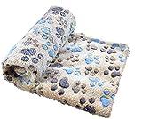 Pet blanket kennel pad dog blanket autumn and winter warm blanket thick coral velvet