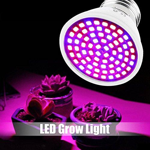 eecoo LED Pflanzenlampe Pflanze Lampe Volles Spektrum with UV IR-Beleuchtung für Indoor-Pflanze Hydroponik Veg Blüte wachsen E27 36W AC220V 72LED (Pflanzen Licht Led Volles Spektrum)
