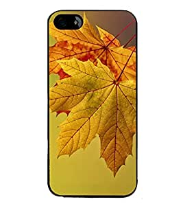 PrintVisa Stunning Leaves High Gloss Designer Back Case Cover for Apple iPhone 5