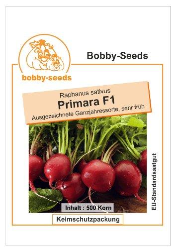 Bobby-Seeds Radieschensamen Primara F1 Portion