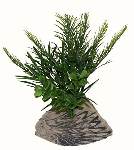 Rock Garden Kunstpflanze mit dekorativem Kunstharz, 15,2 cm, Grün - Fisch-aquarium-rock-hintergrund