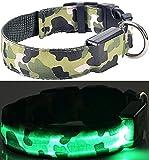 LEUCHTENDES Hunde-Halsband, Größe: M (40-48cm / 2,5cm breit), GRÜN CAMOUFLAGE-Design, mit Klickverschluß. LED's leuchten und blinken im Dunkeln.