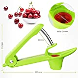TopElek Cherry Pitter or Stoner, Cherry Olives and Plums Core or Seed Remover, Kitchen Gizmo with Scoop Design for One Hand Operation