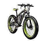 """RICH BIT Bici elettriche da Uomo Cruiser Fat Bicicletta TP012 1000 W*48V*17AH Fat Tire 26""""*4.0 7marce Shimano Dearilleur Power Ciclismo Verde, Donna Uomo Unisex, Green"""