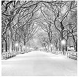 WH-PORP Weiße verschneite Straße Bäume Winter Landschaft Foto Wandbild für Wohnzimmer Tv Sofa Hintergrund Wand Dekor nicht gewebte benutzerdefinierte Größe 3D Tapete-128cmX100cm