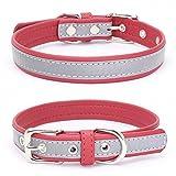 Balock Schuhe Welpen Hundehalsband,Einstellbare Mikrofaser Halsband Puppy Cat Halskette,Hundehalsbänder für Welpen,Katzen,für Mädchen Jungen (Rot, XS)