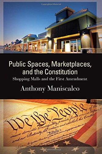 Public Spaces, Marketplaces, and the Constitution: Shopping Malls and the First Amendment (SUNY series in American Constitutionalism)