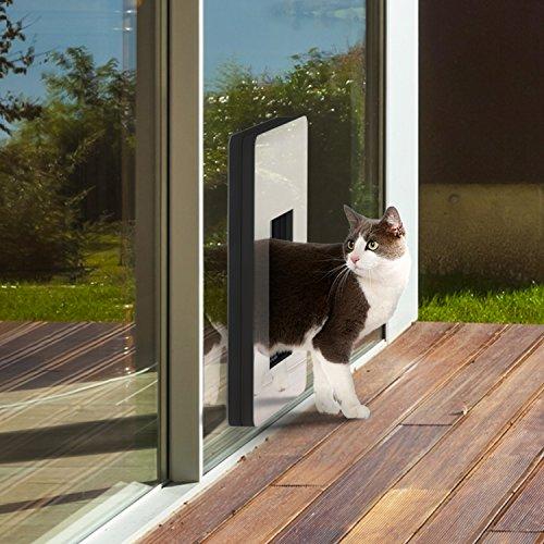 petWALK - Haustüre für Katzen und kleinere Hunde mit rechts angeschlagenem Türblatt -