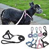 Saniswink Fashion Praktisches Haustier Hund Puppy Weich Muster Nylon Stripe Hundegeschirr Walking Leine–zufällige Farbe