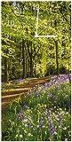 Wallario Design Wanduhr Blaues Hasenglöckchen im Sommerwald aus Acrylglas, Größe 30 x 60 cm, weiße Zeiger