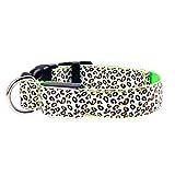 DERNON LED Leuchtend Licht emittierendes Hundehalsband Nylon LED-Blitzlichthalsbänder grün M