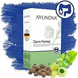 AYUNOVA Darm-Formel - 60 vegane Kapseln mit der einzigartigen Kombination aus bewährten Pflanzen, essentiellen Vitaminen und Mineralstoffen - Ihr täglicher Beitrag für eine gesunde Darmfunktion