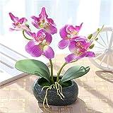 Fleurs artificielles Bouquet plantes en soie Printemps papillon orchidées Phalaenopsis Bonsaï avec pot de fleurs en pierre simulée décoration de la maison innovante pour le mariage maison & jardin