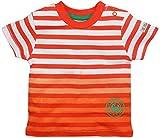 FS Mini Klub Baby Boys Cotton Striper Tee - (3-6 Months)