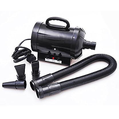 BTM PRIMDAY 2800W Dog Dryer Pet Dog Blaster Fur Grooming Adjust Low Noise Coat Blowdryer Hairdryer High Velocity (Blue) 4