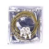 Un Set Di 6 Corde Per Chitarra Acustica