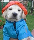 Hunde Regenmantel Regenjacke Regenschutz Regencape Jacke Mantel Kapuze S