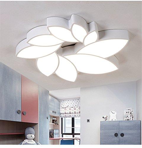 HEXIAOMAO Lámpara de techo en dormitorios simplicidad moderna habitación de matrimonio habitación luz creativa individualidad románticas niños lámpara de hierro de diámetro 60 cm.