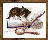 RIOLIS Gattino sul Libro Set Punto Croce, Cotone, Multicolore, 30x 24cm