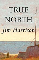 True North: A Novel