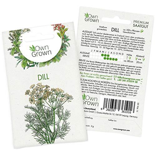 OwnGrown Premium Dill Samen (Anethum graveolens), Dill Samen einjährig, Saatgut für rund 500 Dill Pflanzen