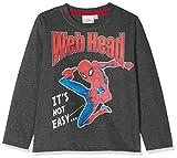 Spiderman 7583, Camiseta para Niños, Gris, 5 años