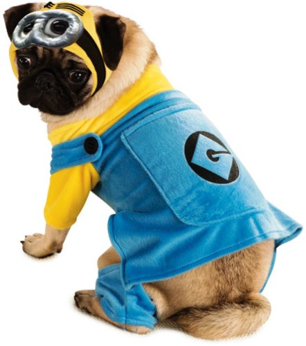 Minion Kostüm Hund (Hund Minions Kostüm)
