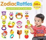 RIANZ All New cute Animal Rattle toy for newborn baby kids (Set of 2 random designs)