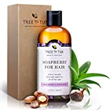 Best Dht Shampoos - Organic Shampoo - Soft Review