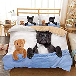 SIONOLY Bedding Juego de Funda de Edredón, Bulldog francés durmiendo con Osito de Peluche en una Cama acogedora Imagen de Mejores Amigos sueños Divertidos Juego de Cama Decorativo de 3 Piezas