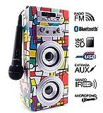Biwond Joybox Altoparlante con lettore audio, microfono karaoke e Bluetooth, modello Picasso