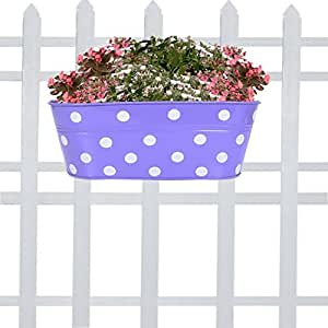 TrustBasket Metal Dotted Oval Railing Planter (Purple)